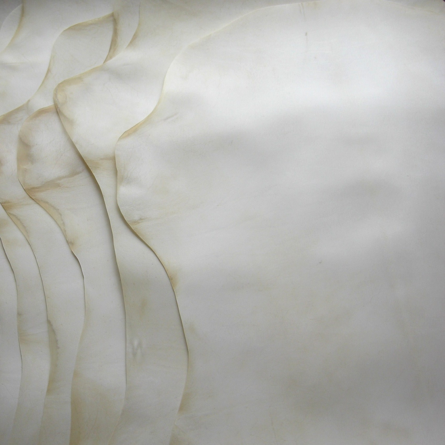 Also see Calfskin Vellum product options